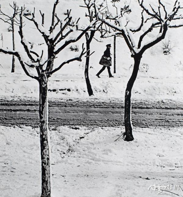 김테레사, 눈길, 1968, 디지털 잉크젯 프린트, 작가 소장.jpg
