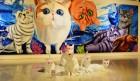 [전시] '고양이'를 소재로 한 이색 작품을 만날 수 있는 'THE 냥 -Love like cats 展'