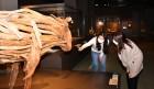 국립민속박물관, 우리의 세시풍속을 새롭게 재현하여 선보여
